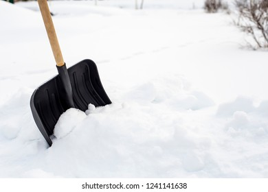 Black plastic shovel with a wooden handle standing in a snowdrift, on a background of snow and bushes vselskoy areas.