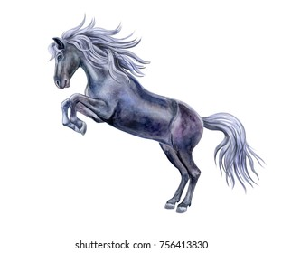 Black playful horse with silver mane isolated on white background. Illustration. Watercolor. Template.