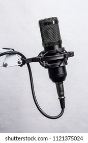 Black professional studio condenser microphone in the anti vibration holder isolated on white background
