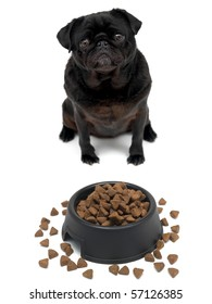 A black Pug and a dog bowl isolated against a white background