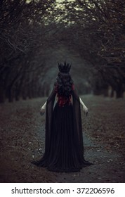 Dark Queen Images Stock Photos Vectors Shutterstock