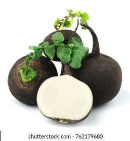 black radish on a white background