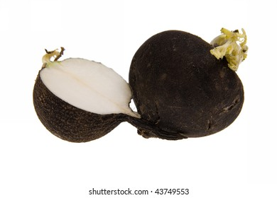 Black Radish, turnip isolated on white