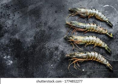Black raw tiger prawns. Black background. Top view. Copy space