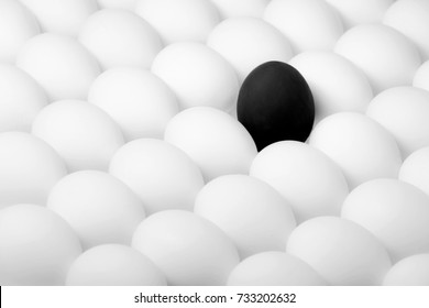 black rebel egg standing out from the crowd of white eggs