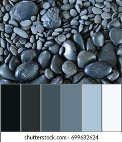 Black river rock background with extracted color swatches or color palette