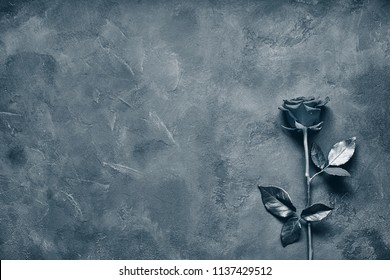 Black rose lies on a dark stone slab