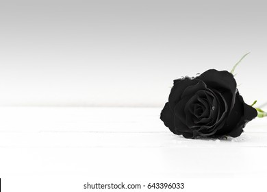 A black rose on a wooden table