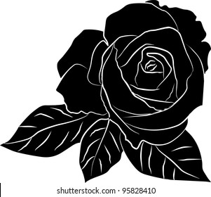 black rose silhouette - freehand on a white background