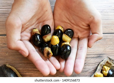 Black rosewood seeds in both slender palms on a brown table. At the same time, there are black rosewood seeds and seeds on the table.