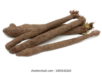 Black salsify isolated on a white background