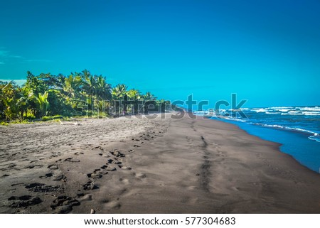 Black Sand Beach Costa Rica Stock Photo Edit Now 577304683