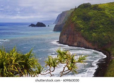 Black sand beach at Pololu lookout coastline at North Kohala, Big Island, Hawaii