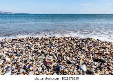 Black Sea Bulgaria with seashells on the beach