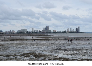 Black sea outside Pattaya. People are catching snails to catch fish to cook. Pattaya thailand.