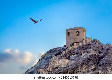 A black seagull flying adjacent to an old abandoned watchtower over the hill. From Muscat, Oman.