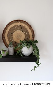 Black shelf with several indoor plants and an african woven plate