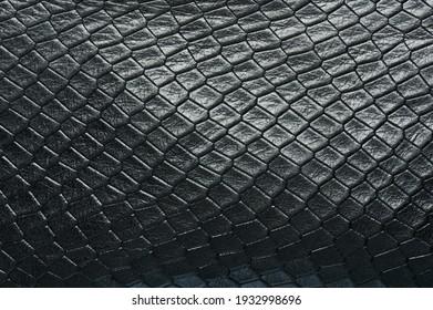Black shiny crocodile skin background macro close up view