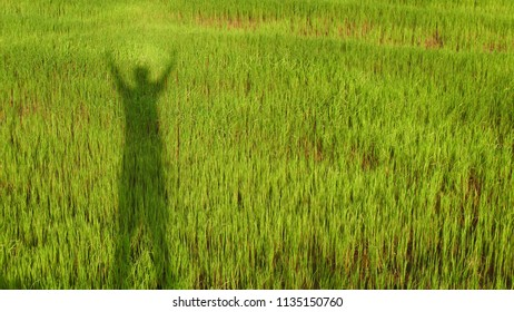 The black silhouette of the farmer holding the two hands represents the success.