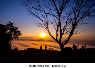 Black silhouette trees, mountain mist and morning light,Sisaket province,Thailand,ASIA.