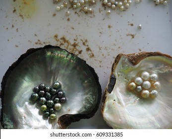 Black, silver and gold pearls in oyster shells.