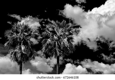 black sky and white clouds