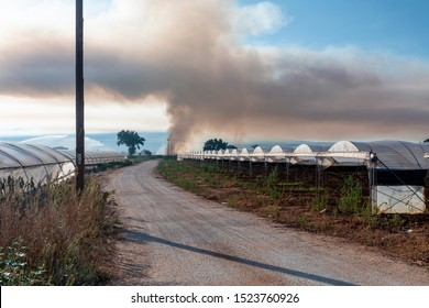 Black smoke in the air due to burning off of undergrowth on an agricultural farm.