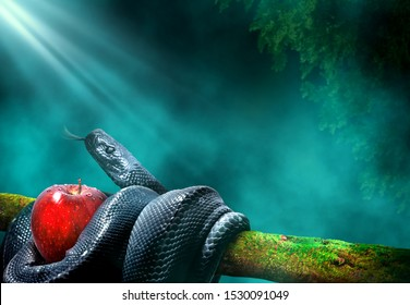 Black snake with an apple fruit in a branch of a tree. Forbidden fruit concept.