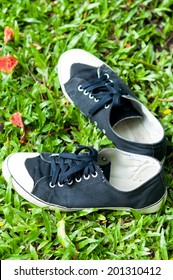 Black sneakers on grass background