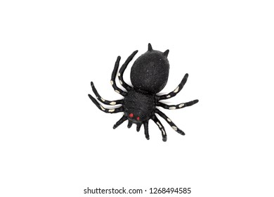 black spider toy isolated on white. Comic horror for Halloween