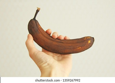 Black spoiled banana in hand. A hand is holding a rotten black or brown banana fruit. A rotten banana. Single spoiled black banana. Copy space for your text. Trendy spoiled organic fruits - Image.