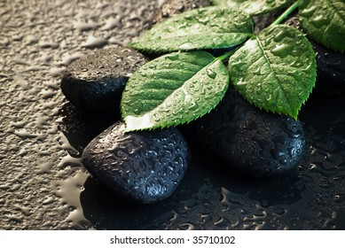 black stones with water drops and leaves