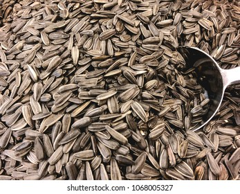 Black sunflower seeds with metallic scoop close up.