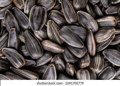 Black sunflower seeds, square organic background. For texture or background. top view