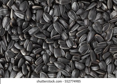 Black sunflower seeds. Texture, background.