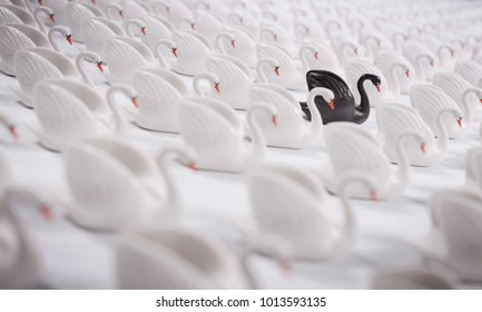 Black Swan Event. Concept.  This is a term used to describe a very rare or otherwise unexpected event that has a major effect. It is a metaphor often used in science or economics.