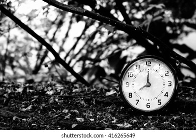 black table clock shown 8.00 AM with trees,leaves and branches background on dry leaves on wood ground (black and white tone)