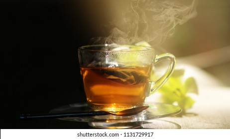 Black tea with bag in glass cup with vapor steam on wooden table by the garden.Sunlight shining upon the cup.Light and shade of evening moment.