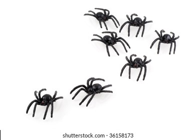 Black toy spiders colony, isolated on white.
