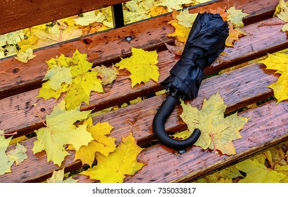 Black umbrella forgotten on the benches strewn with maple leaves
