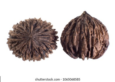 black walnut from the Andes called tocte isolated on white