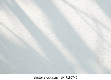 Black and White  abstract background texture of shadows leaf on a concrete wall.