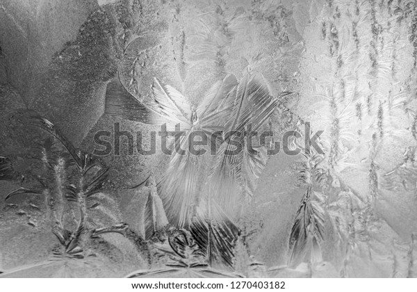 Black and White Amazing Crisp Frost Draw Structure on a Window