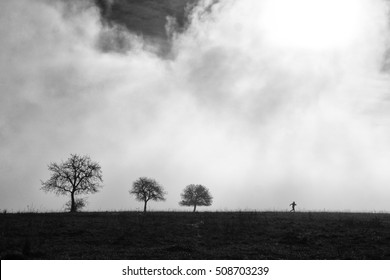 Black and white artistic photo of running girl on the meadow with three trees which are covered in white autumn light. Scenery from morning mist. Photo with space for your montage.