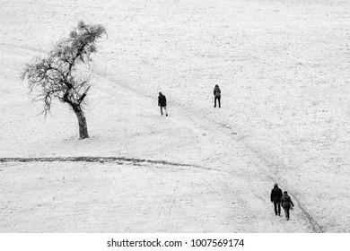 Black and White Bavaria Germany Europe Winter Landscape