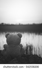 Black and white bear sad,In a deep depression, black&white, concept