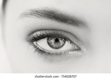 Black and white beauty portrait of beautiful young woman eye wearing make up with perfect flawless skin, looking at camera. Eye, pupil, lashes and brows. Healthy sight and vision. Cosmetics lifestyle.