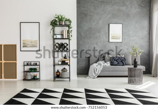 Black White Carpet Spacious Living Room Stock Photo Edit Now 752156053