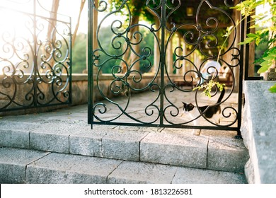 A black and white cat at the metal gate with patterns at the stone steps against the background of a long corridor.