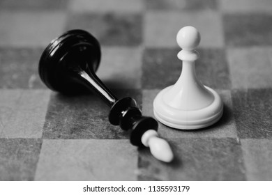 black and white chess game background. black king and white pawn on chessboard. winner and looser. business strategy growth concept. clever thinking game. hobby wallpaper.